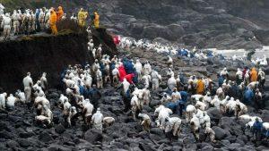 Voluntarios retirando el crudo que alcanzó las costas gallegas en el naufragio del Prestige