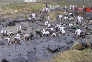 Voluntarios limpiando las costas gallegas