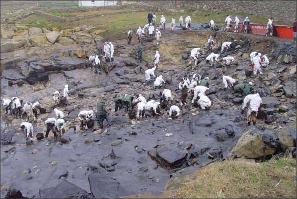 Prestige: voluntarios limpiando las costas gallegas